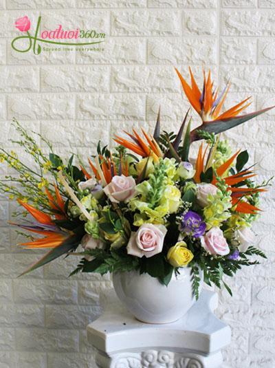 Bình hoa chúc mừng- khu vườn bí mật